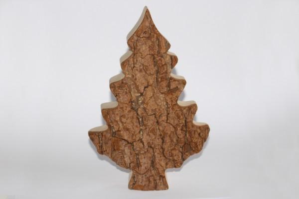 Zierbaum Gr. 3 , 20cm